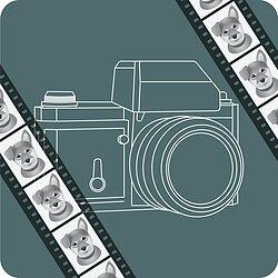Filme Für Analoge Kameras In Allen Formaten Fotoimpexde Analoge